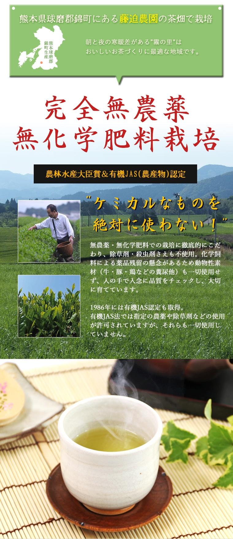熊本県藤迫農園で採れた完全無農薬・無化学肥料栽培のお茶です