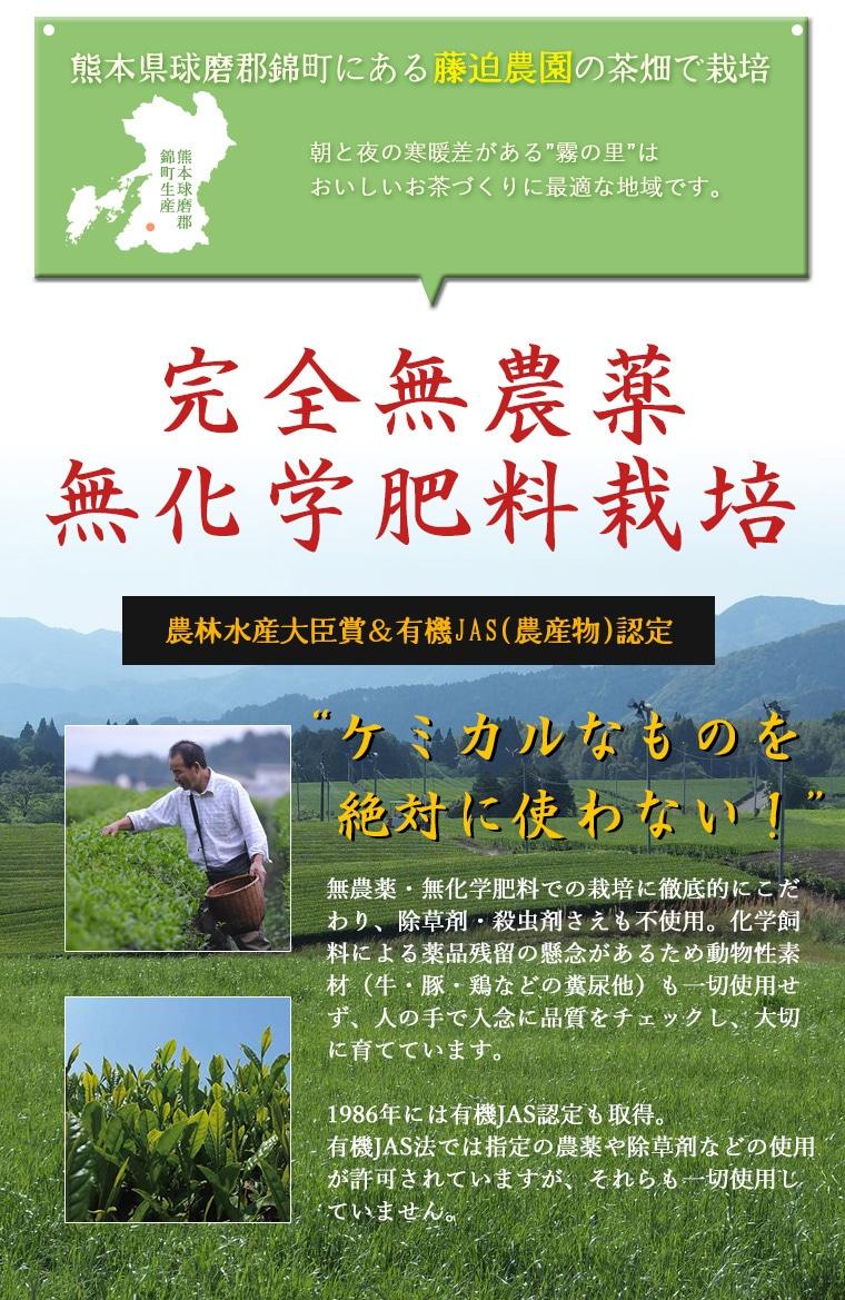 完全有機 無農薬 無化学肥料栽培 番茶かがやき