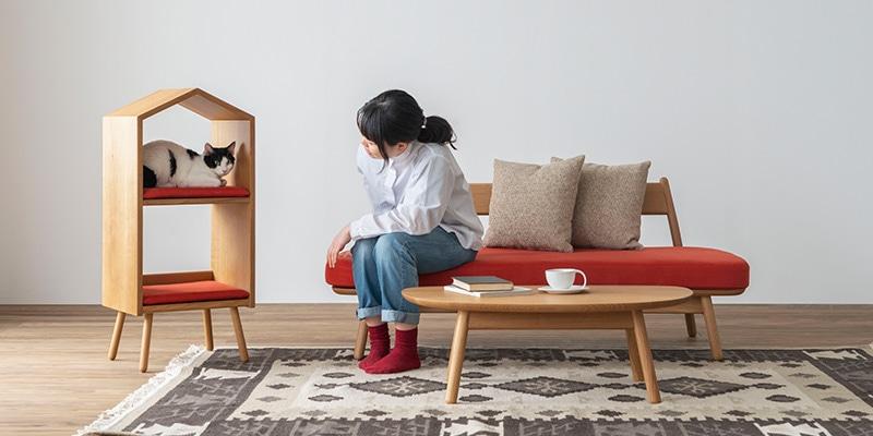 飛騨産業 森のペット家具シリーズ