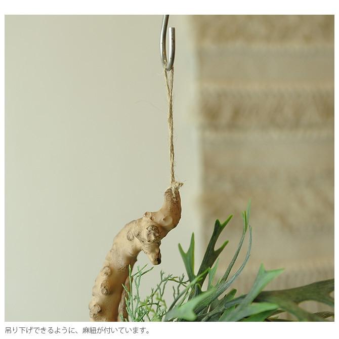 Brown. ブラウン フェイクグリーン ビカクシダ 着生 ブルー  観葉植物 フェイクグリーン イミテーションフラワー 造花 ディスプレイ ボタニカル 植物 多肉植物 インテリア おしゃれ