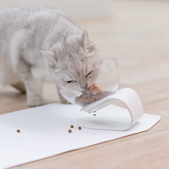 Cat Bowl with Stand 猫用食器