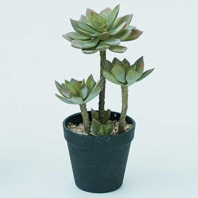 Brown. ブラウン フェイクグリーン エケベリア ポット 26  観葉植物 フェイクグリーン イミテーションフラワー 造花 ディスプレイ ボタニカル 植物 多肉植物 インテリア おしゃれ
