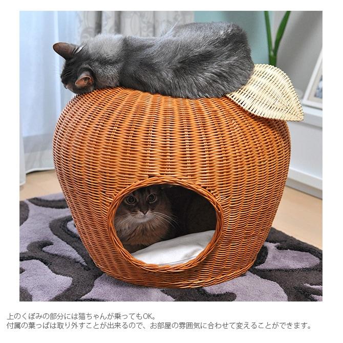 猫 ベッド ラタン ポムハウス  キャットベッド 猫用ベッド ベッド ハウス クッション 犬用 かわいい おしゃれ 猫用 ネコ いぬ 犬 イヌ