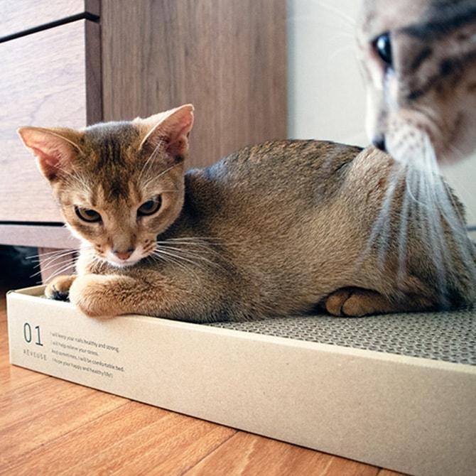 猫の爪とぎ 日本製