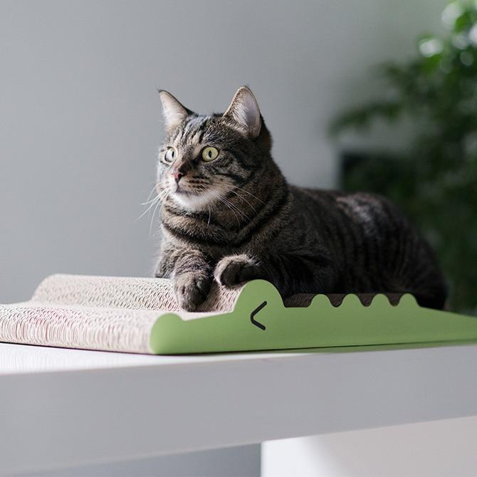 Cat Scratch Board / Crocodile (M)猫用つめとぎボード
