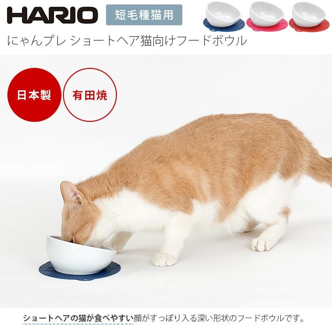 HARIO にゃんプレ ショートヘア猫向けフードボウル  ペット 食器 皿 短毛種用 水入れ 滑り止め付き 有田焼 日本製 ネコ ねこ