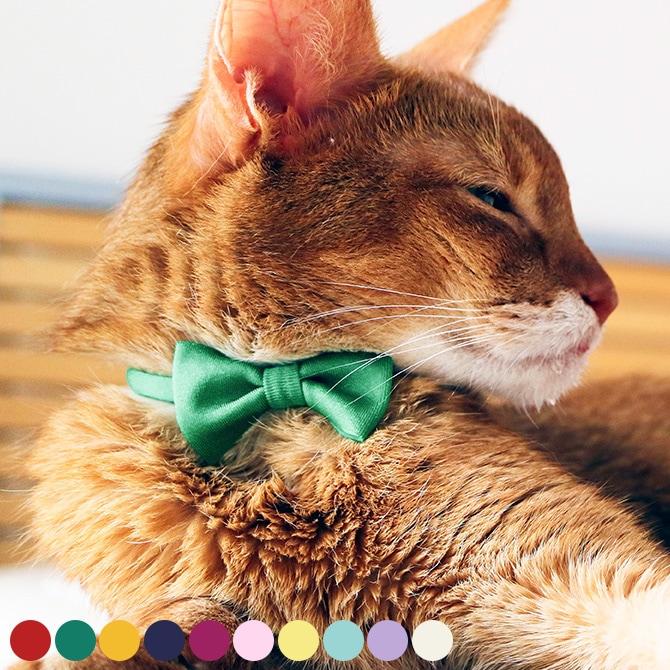 necono ネコノ 猫の首輪 Luce Ribbon ルーチェ リボン  猫 首輪 おしゃれ かわいい ギフト 猫用品 ペット用品 ペットグッズ ねこ ネコ