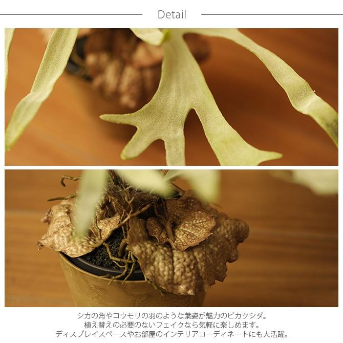 Brown. ブラウン フェイクグリーン ビカクシダ ポット 58cm  観葉植物 フェイクグリーン おしゃれ 造花 ディスプレイ ボタニカル 植物 多肉植物 インテリア おしゃれ