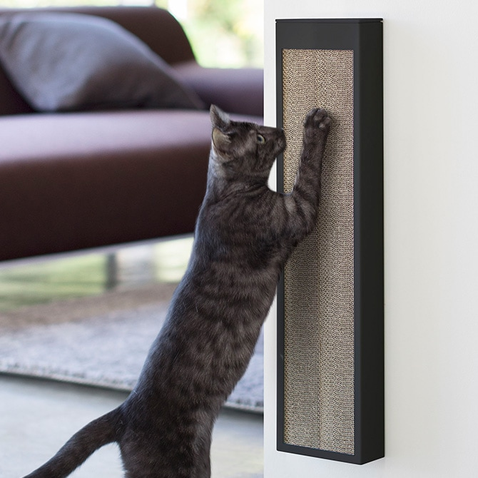 猫の爪とぎケース