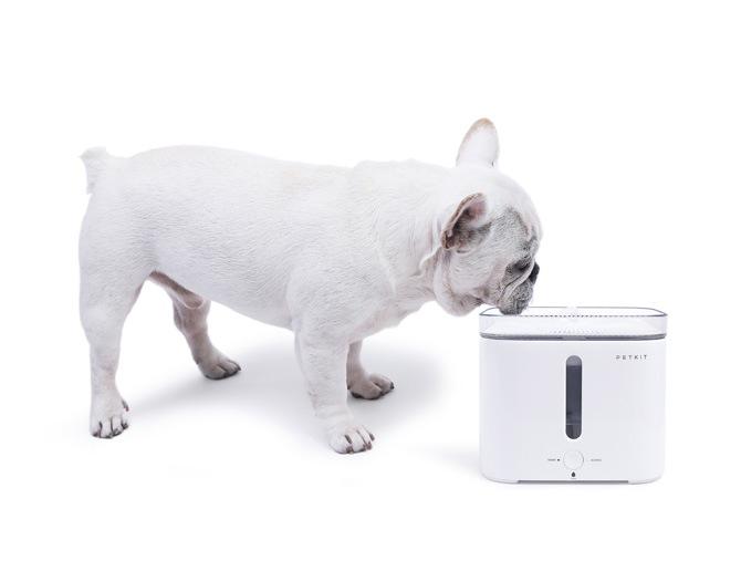 PETKIT ペットキット ドリンキング・ウォーターファウンテン 2  猫用品 犬用品 給水器 お水 清潔 循環 ろ過 洗浄機能 節電