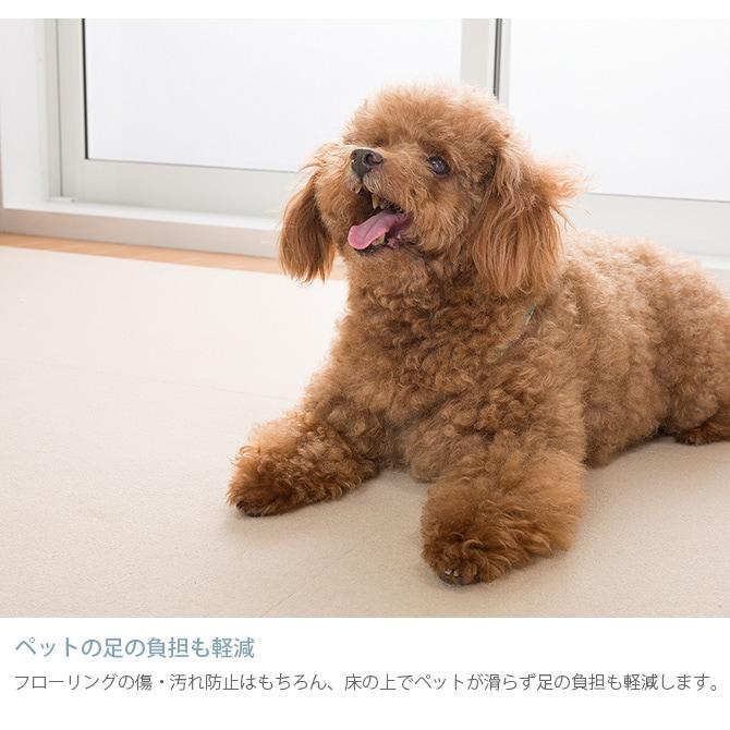 SANKO(サンコー) 吸着おそうじラクラクマット 60×120cm  犬 猫 ペット用 マット 撥水加工 おくだけ吸着 フロアマット 傷防止 汚れ防止 ずれない