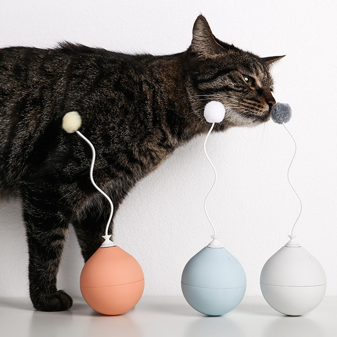 Balloon Cat Toy 電動式猫用おもちゃ