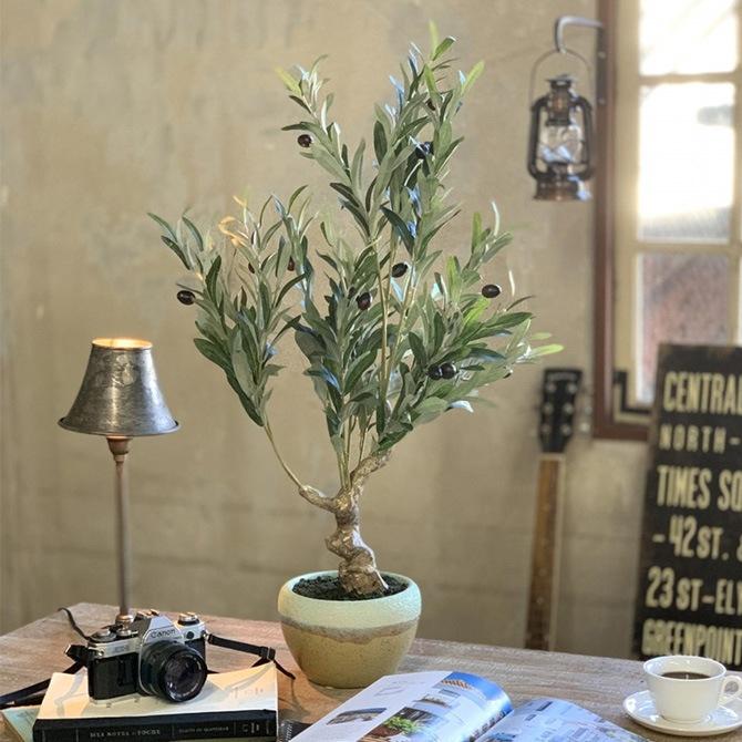 フェイクグリーン オリーブの木 ポット