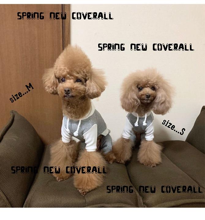 A BIENTOT! アビエント 配色フードつなぎ  犬 犬の服 ドッグウェア つなぎ オールインワン カバーオール 伸縮 可愛い シンプル