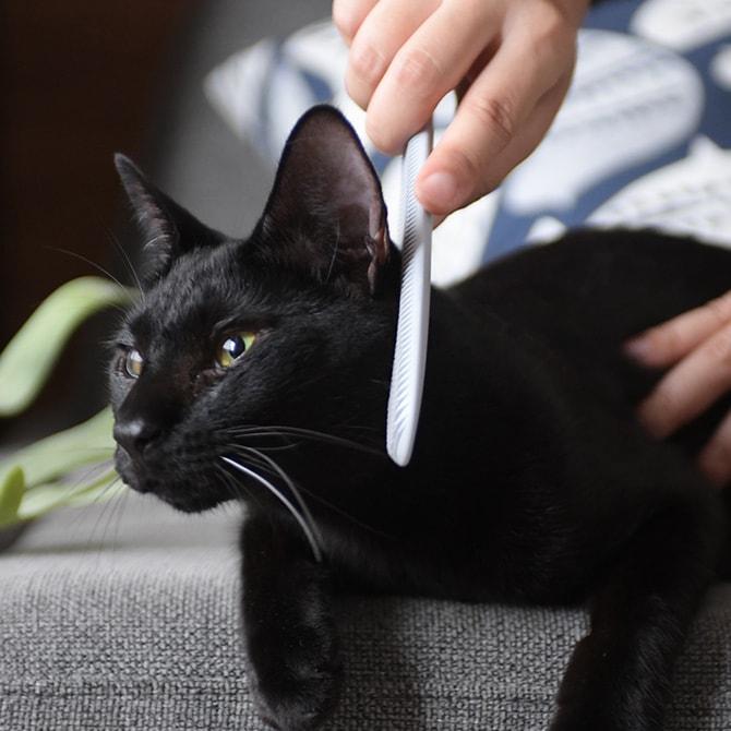 CAT GROOMER ねこじゃすり  ねこじゃらし 猫 マッサージ グルーミング