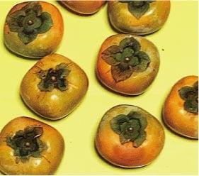 ウモガ ブログ 柿