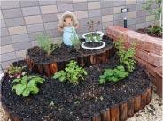 ウモガ ブログ 小さなハーブ園 作りました