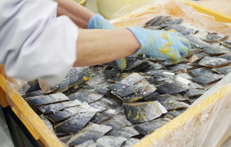 旬の魚を、市場から仕入れて加工。