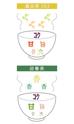 蔵出茶502・迎春茶 味のイメージ