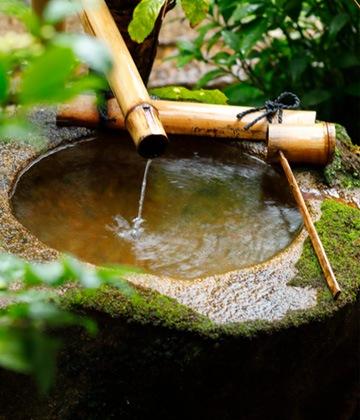 敷地内に湧き出る井戸の軟水
