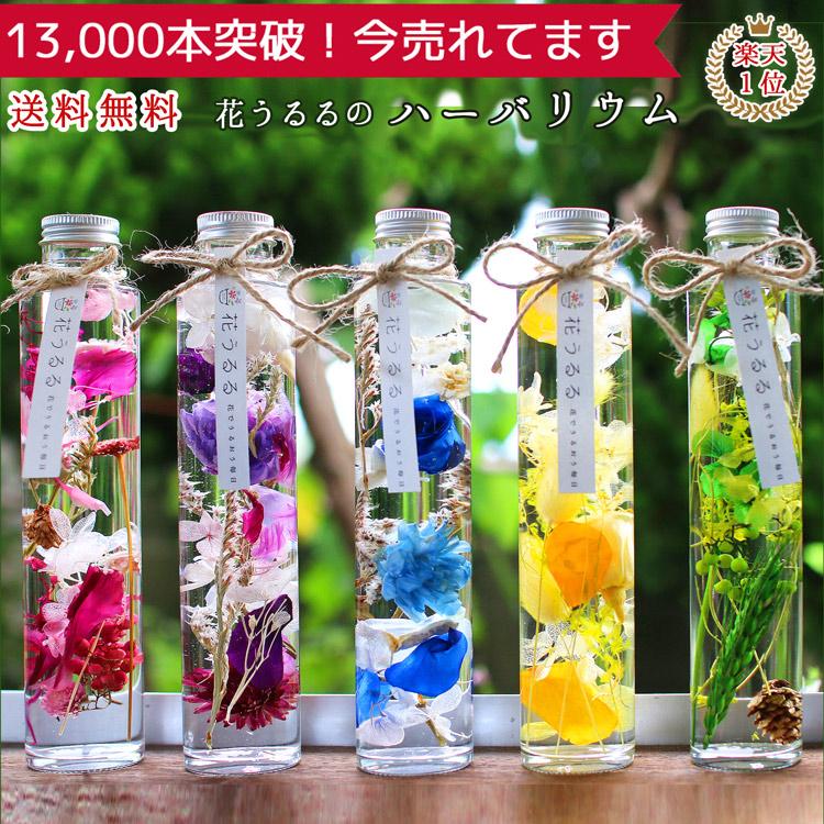 花 誕生日 ギフト プレゼント[花うるるのハーバリウム] 選べる5色