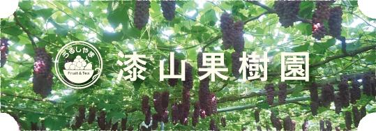 漆山果樹園について