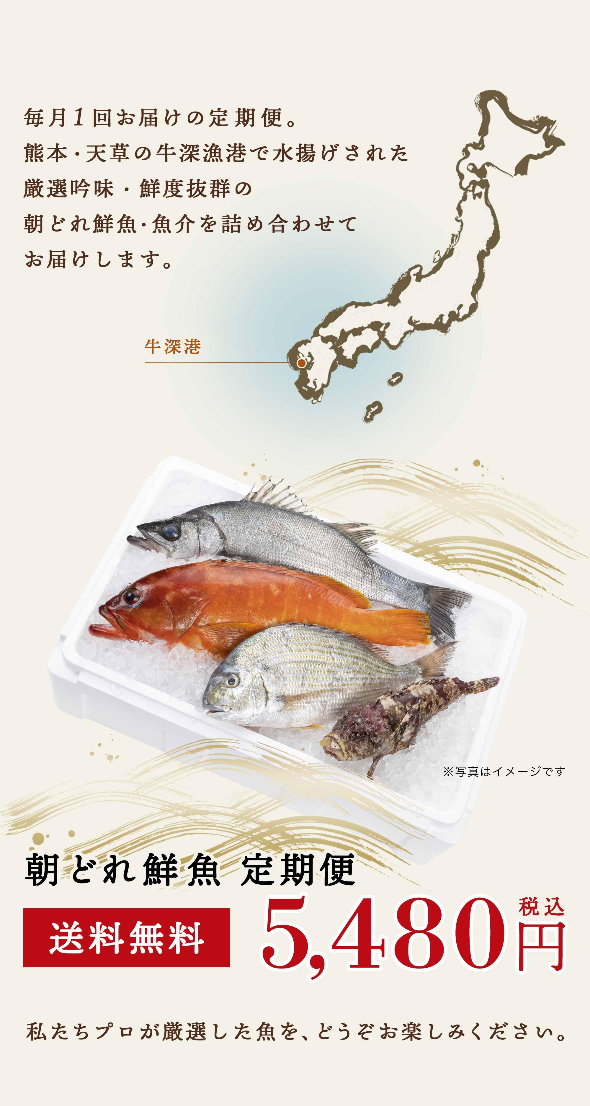 毎月1回お届けの定期便。熊本・天草の牛深漁港で水揚げされた厳選吟味・鮮度抜群の朝どれ鮮魚・魚介を詰め合わせてお届けします。私たちプロが厳選した魚を、どうぞお楽しみください。