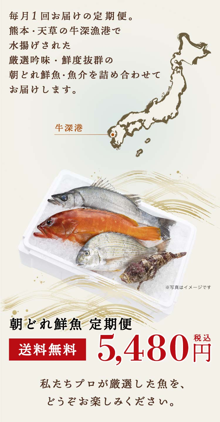 毎月1回お届けの定期便。熊本・天草の牛深漁港で水揚げされた厳選吟味・鮮度抜群の旬の鮮魚・魚介を詰め合わせてお届けします。私たちプロが厳選した魚を、ぞうぞお楽しみください。