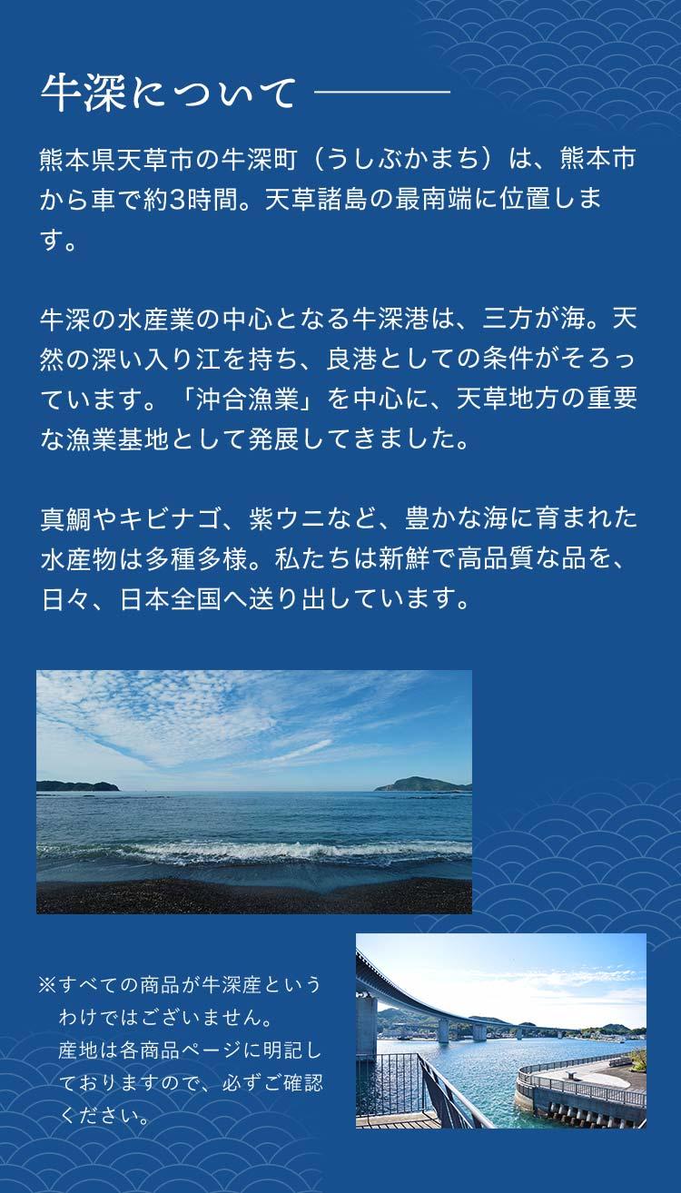 熊本県天草市の牛深町(うしぶかまち)は、熊本市から車で約3時間。天草諸島の最南端に位置します。