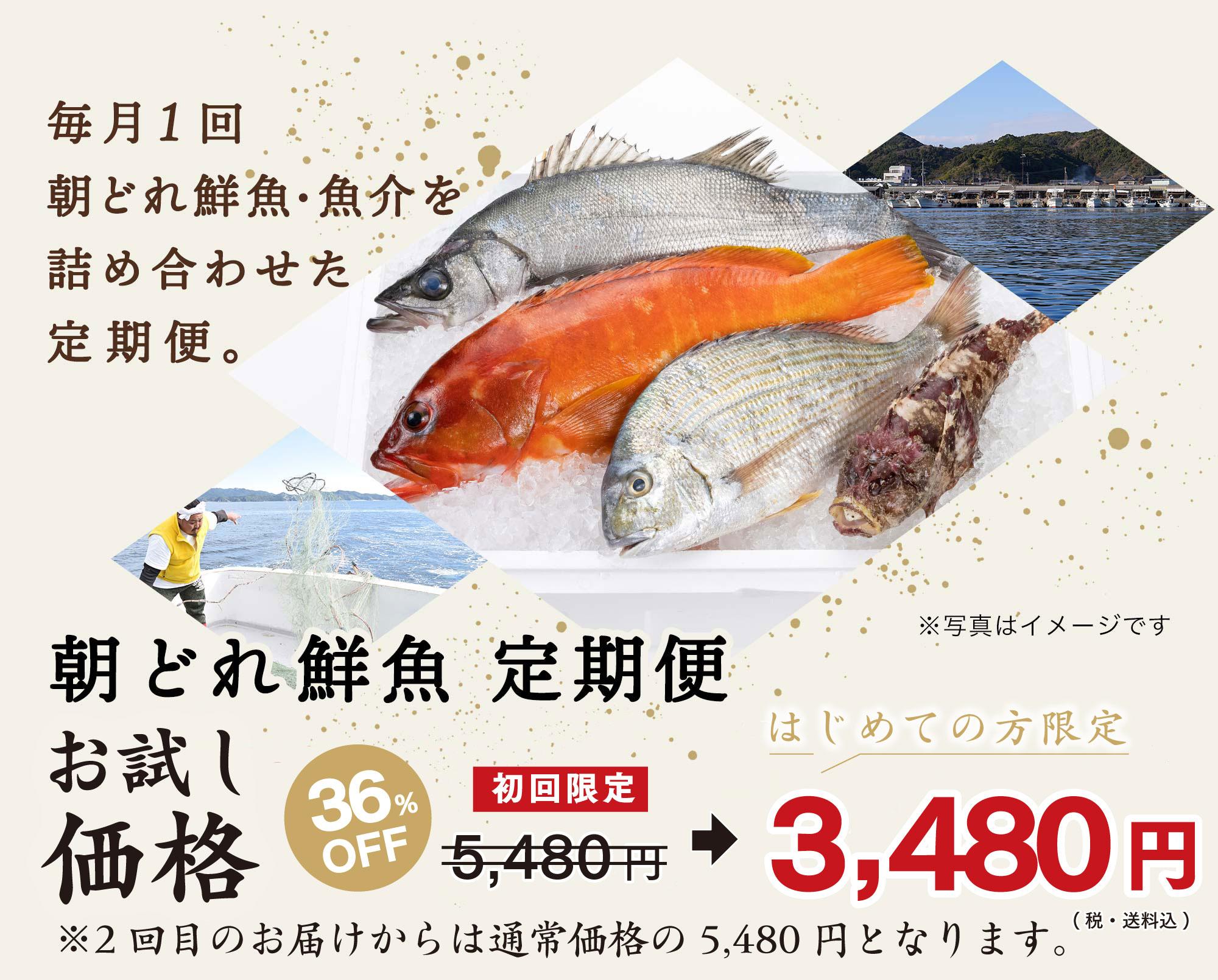 毎月1回お届けの定期便。熊本・天草の牛深漁港で水揚げされた厳選吟味・鮮度抜群の旬の鮮魚・魚介を詰め合わせてお届けします。私たちプロが厳選した魚を、どうぞお楽しみください。