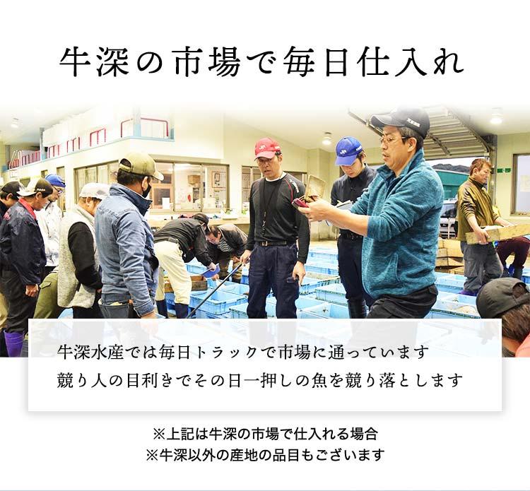 牛深の市場で毎日仕入れ・牛深水産では毎日トラックで市場に通っています競り人の目利きでその日一押しの魚を競り落とします。※牛深の市場で仕入れる場合※牛深以外の産地の品目もございます。