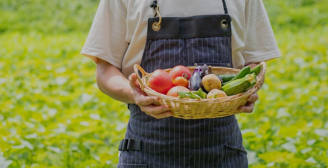 全国の有機野菜