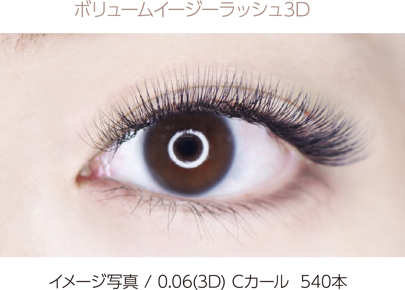 ボリューム イージーラッシュ 3D  540本