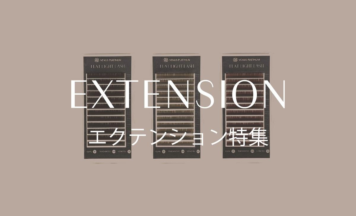 エクステンション特殊