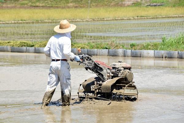 ファン付き作業服農作業