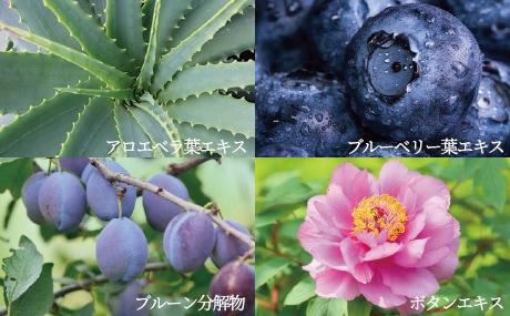 4つの植物エキス