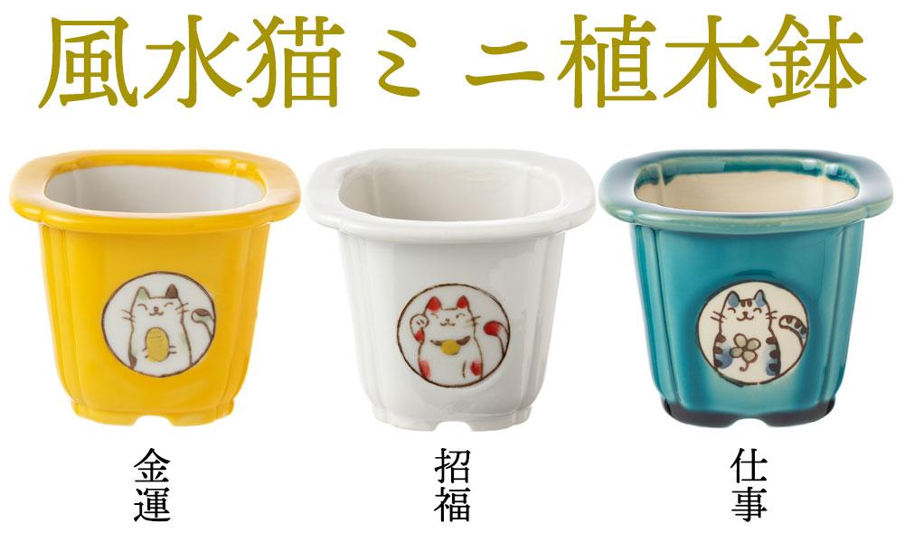 風水猫ミニ植木鉢