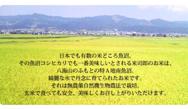 日本で有数の米どころ魚沼