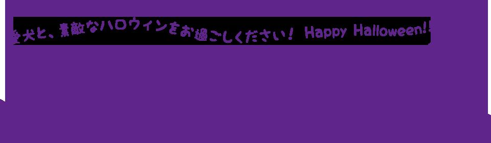 愛犬と、素敵なハロウィンをお過ごしください! Happy Halloween!!