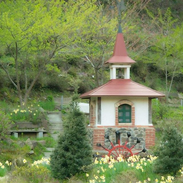 「ケロンの小さな村 水仙の花畑」