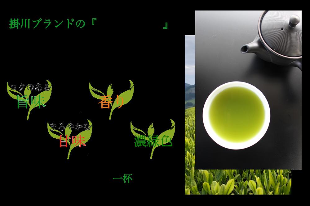 greentea-logo