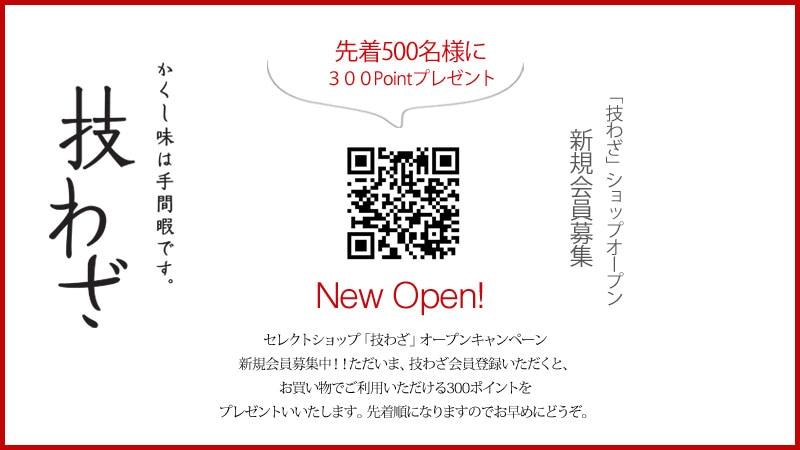 LP_おすすめ_300ポイントプレゼント