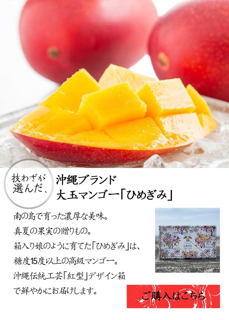 沖縄・マンゴー「ひめぎみ」