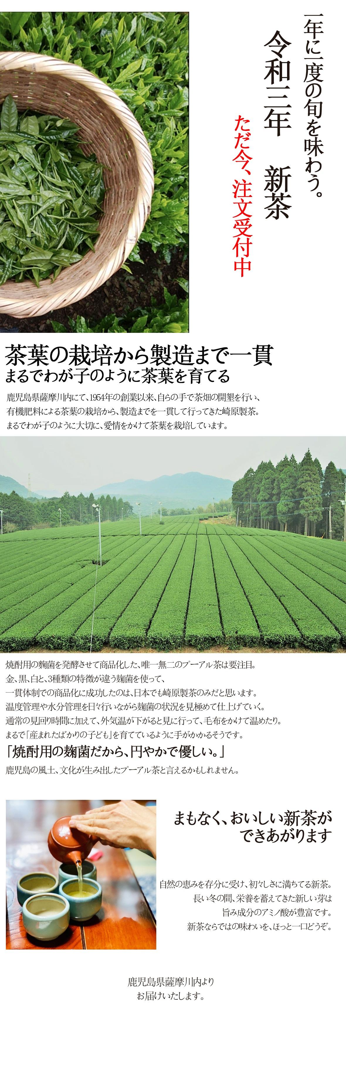 LP_おすすめ_崎原製茶