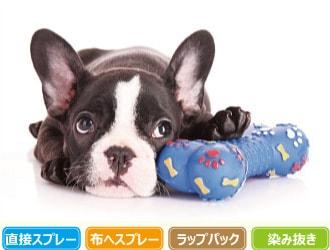 犬とおもちゃのイメージ