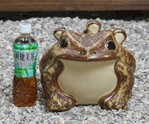 しがらきやき蛙置物 陶器カエル かえるおきもの