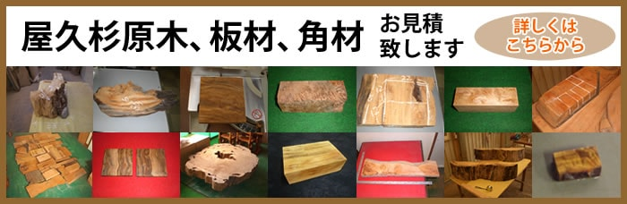 屋久杉原木、板材、角材のお見積もり致します