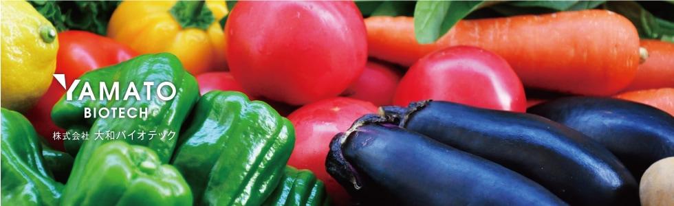 大和の国奈良県曽爾村の