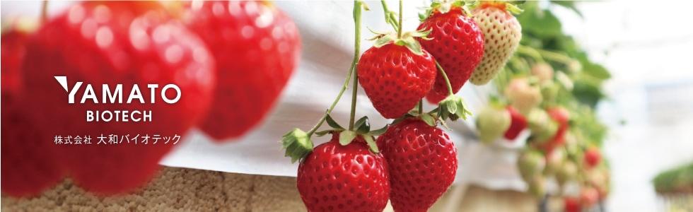 ミネラル豊富な湧き水を使用し