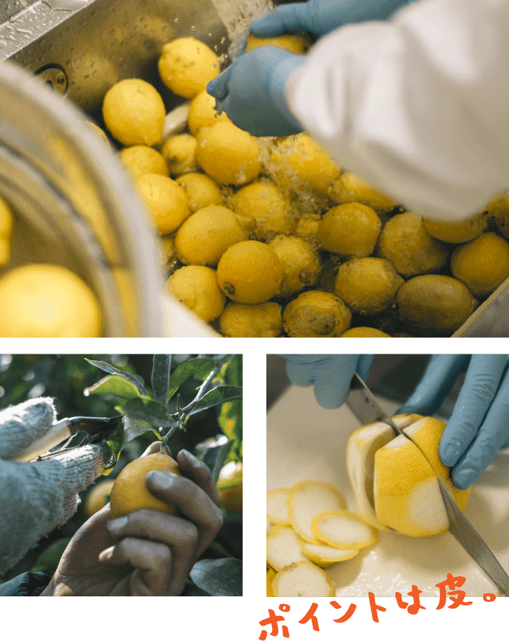 レモン洗ったり